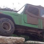 גיפ ירוק לפירוק